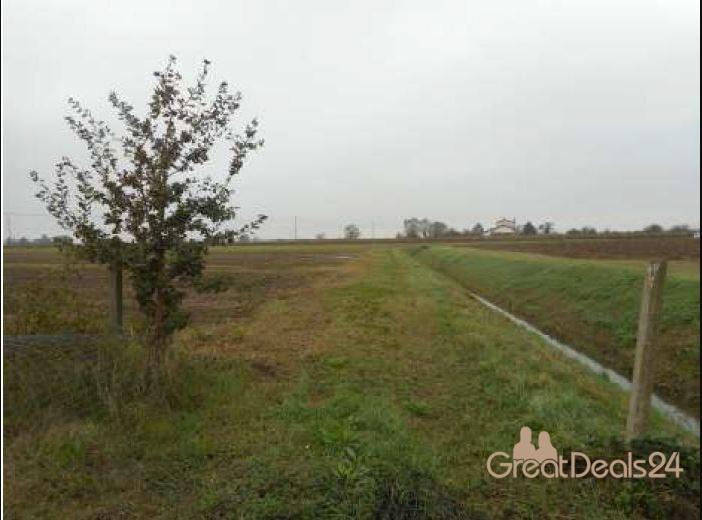 Terreno Agricolo in Vendita Mogliano Veneto